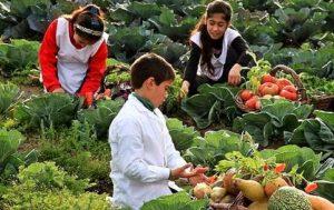 Desarrollo Sostenible - Niños