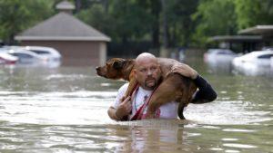 America Latina - Inundaciones - Rescate perro